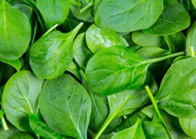 spinach leaves that can help with preventing sickness